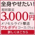 【ラ・パルレ】メソセルライト撃退フルボディコース