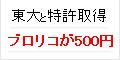 【実質400円】ブロリコ 500円モニター