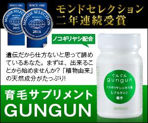 GUNGUN-ぐんぐん-