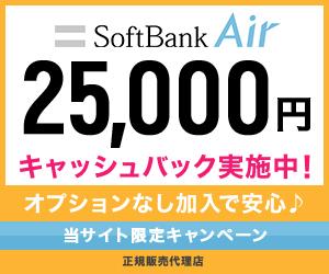 【オプションなし】ソフトバンクエアー(株式会社Wiz)
