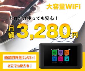 大容量WiFi