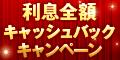 【オリックス・クレジット】VIPローンカード
