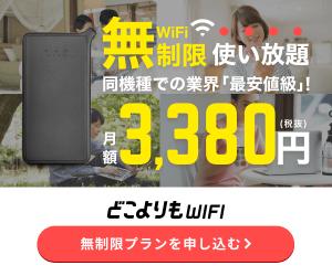 どこよりもWi-Fi(縛りなし)【株式会社Wiz】