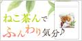 ねこ茶ん_500円モニター