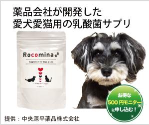 ロコミナ500円モニター
